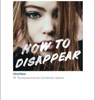 how to disappear sharon huss roat book cover, featuring a brunette appearing in a framed box instagram like